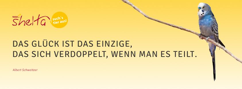 Witzige Zitate & Lustige Sprüche - Musik - zitate und sprichworte ...