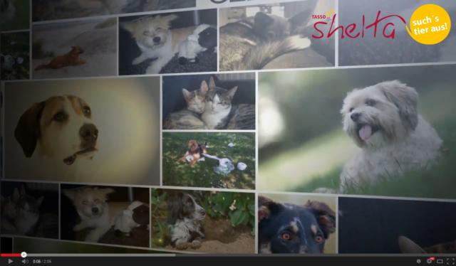 TASSO shelta - Pressemitteilung zum Imagevideo