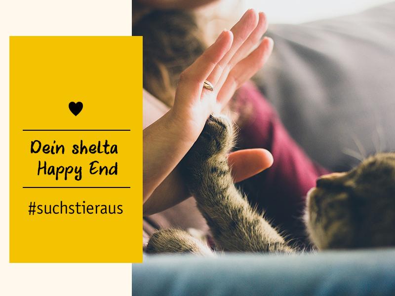 Tierschutz-Tiere shelta Happy End