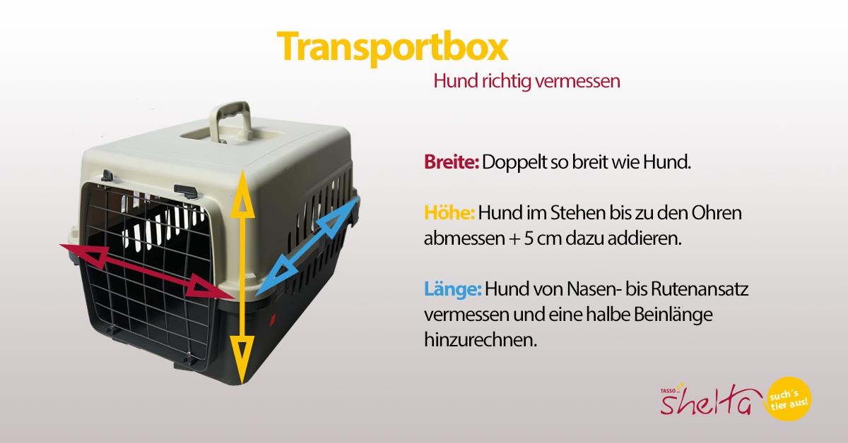 Hund richtig für die Transportbox ausmessen | TASSO shelta | Infografik