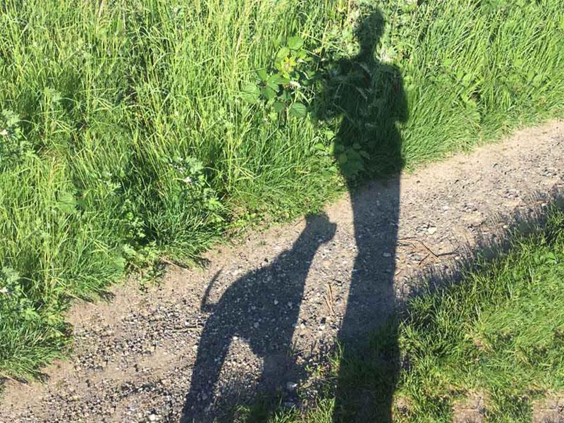 Vorbildlicher Hundehalter - Schatten Hund und Person beim Gassigehen