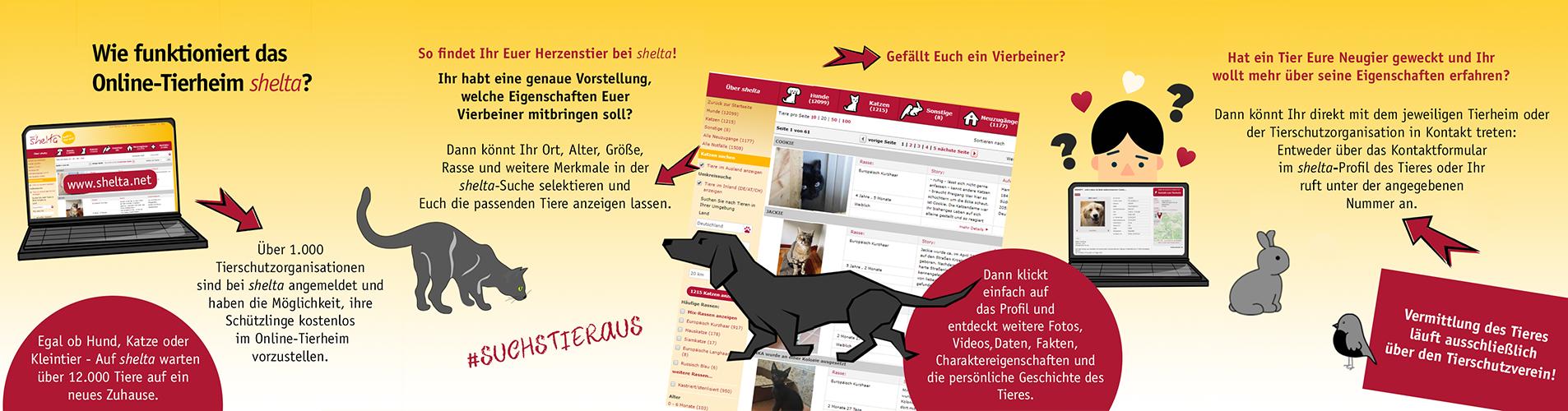 Wie funktioniert shelta Online-Tierheim_Grafik