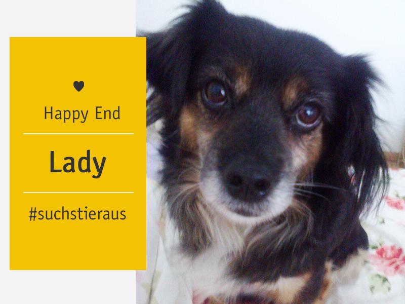 Happy End Hündin Lady - Vera Seegers