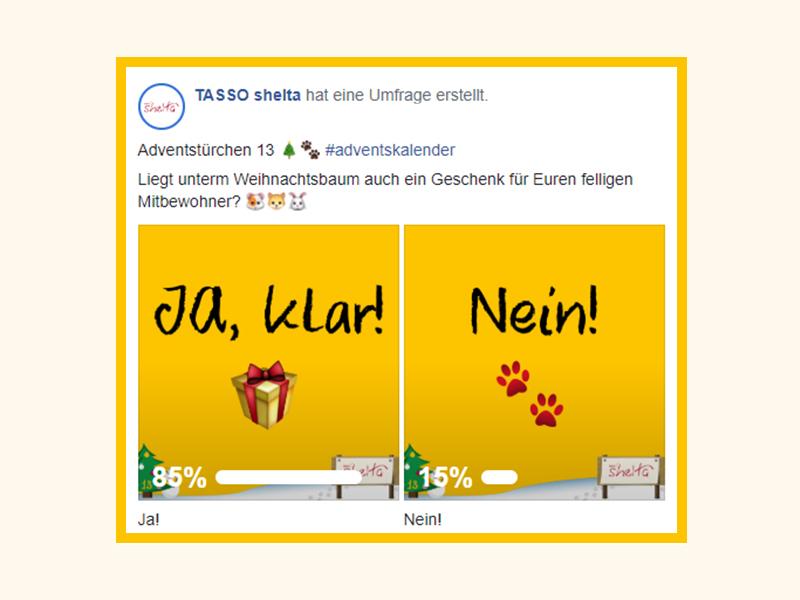 shelta FB-Umfrage_Bekommt Dein Haustier Weihnachtsgeschenke