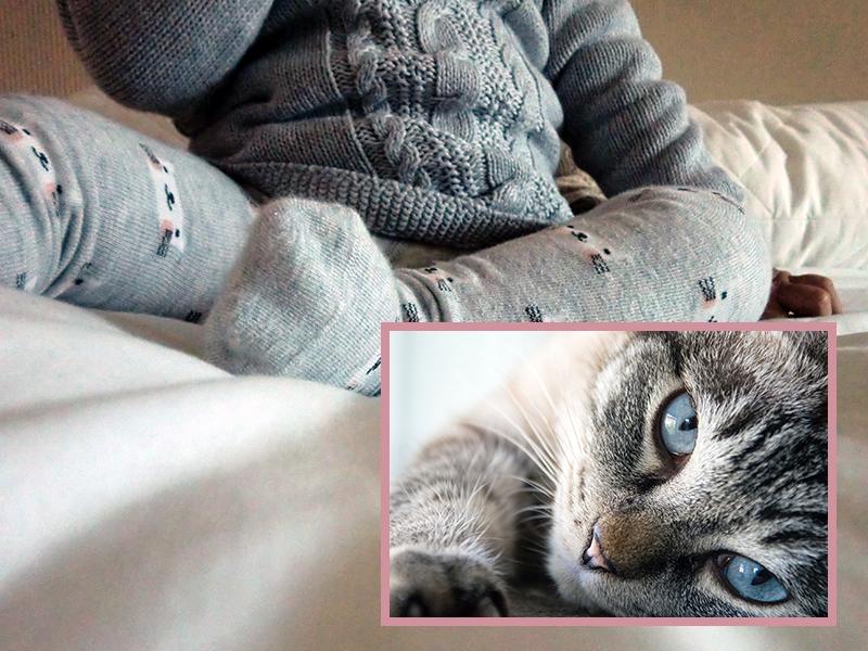 Katze und Baby - muss Katze beim Neugeborenen ausziehen