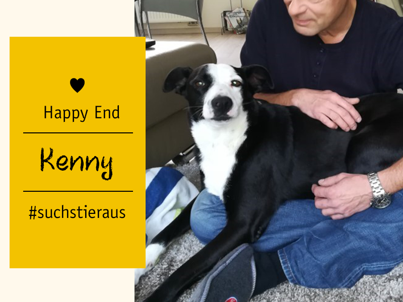 shelta Happy End_Hund Kenny mit Halter_(c) Familie Saß
