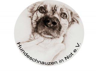 Hundeschnauzen in Not e.V._Logo