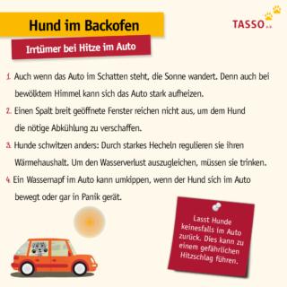 FB_HiB Irrtümer Hitze im Auto_TASSO