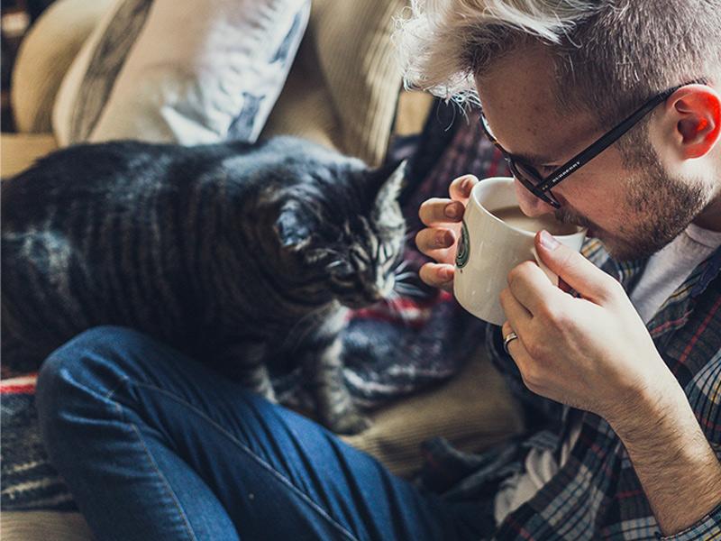 Katze mit Mensch auf dem Sofa_(c) Pixabay